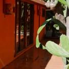 Pension Playa Samara              3101655752 S.A