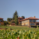 Black Walnut Inn & Vineyard