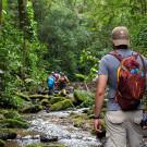 Pousada Salve Floresta