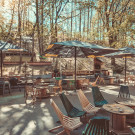 Downtown Forest Hostel & Camping