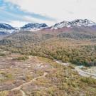 Huemules - Reserva de Montaña